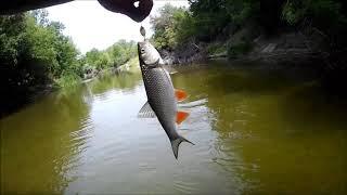 Сплав по реке Ворона