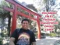 Video de Coyoacan