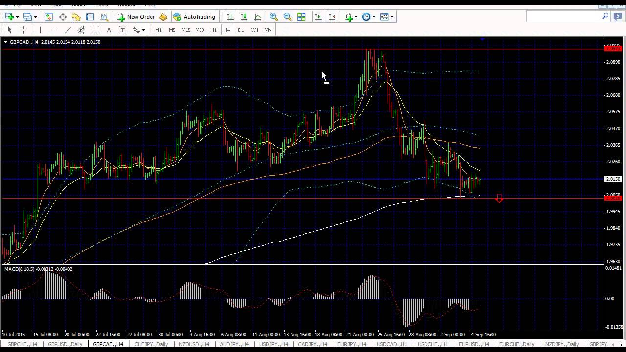 Forex trading coach
