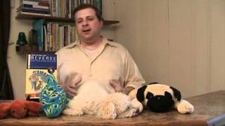 Dog Training Book - Dog Training Tips