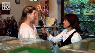 TASSO-TV-Thema: Igel gefunden, was nun?