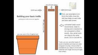 How To Bulid A Simple Trellis 101