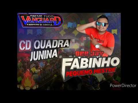cd-ao-vivo-da-live-do-treme-tudo-vanguard-(xote-e-quadrilha)-dj-fabinho
