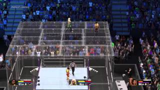 WWE 2K15 divas championship hell in a cell