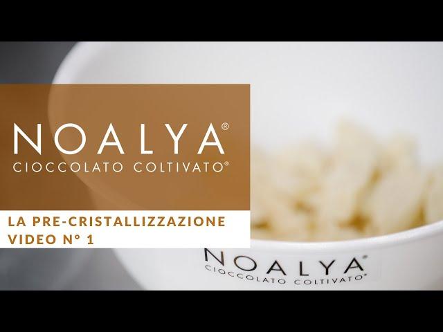Come temperare il Cioccolato - Video n° 1 Noalya - Cioccolato Coltivato