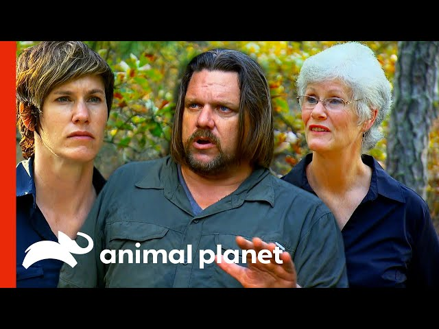 Ranae & Matt Have Trouble Believing This Bigfoot Witness' Story | Finding Bigfoot
