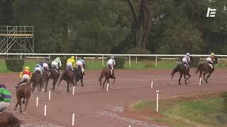 Vidéo de la course PMU PRIX FANDANGO