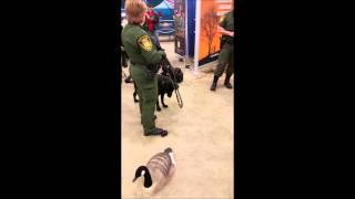 Indiana Conservation Officers & K9 Partners