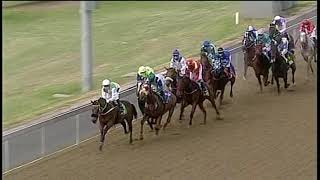 Vidéo de la course PMU PRIX COVID-19 NATIONAL CRISIS HELPLINE 0800 029 999 MAIDEN PLATE