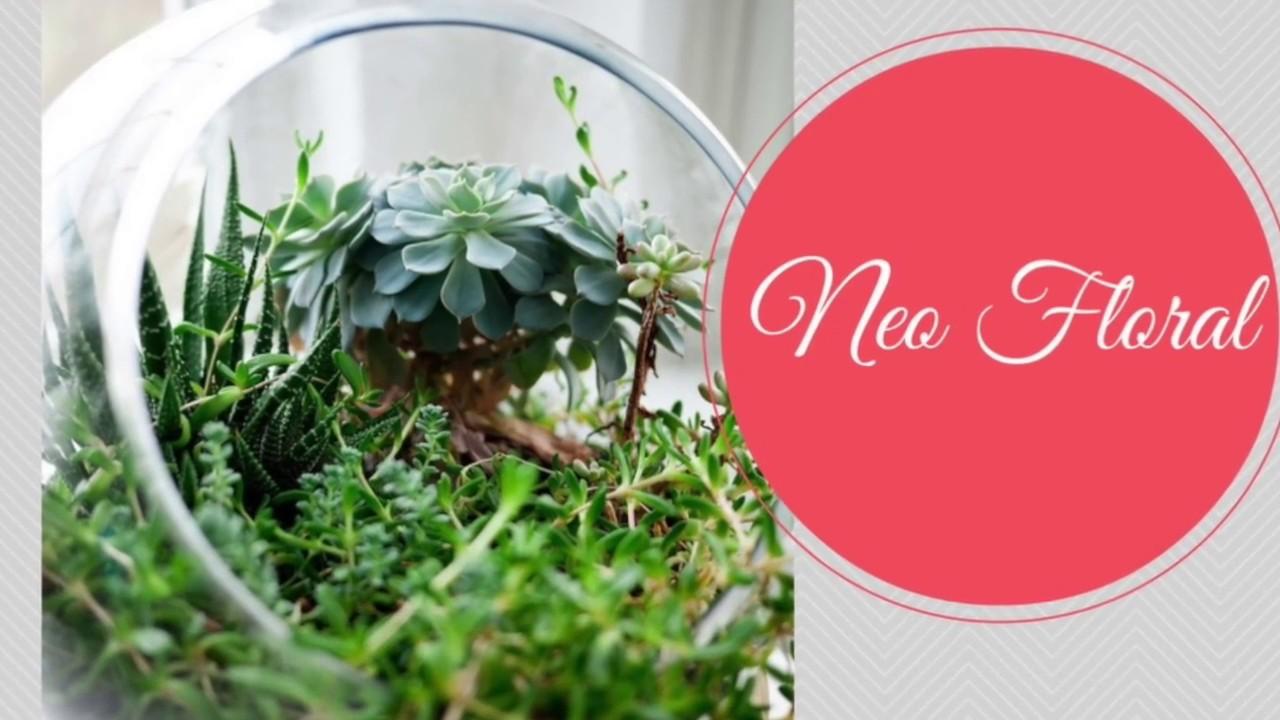 Comment Faire Un Terrarium Plante Grasse comment crÉer des arrangements des plantes grasses