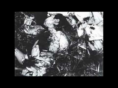 【拡散希望】ベトナム戦争での韓国軍の蛮行