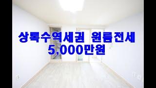 안산원룸 본오동 상록수역세권 전세 도배 청소완료 즉시입…