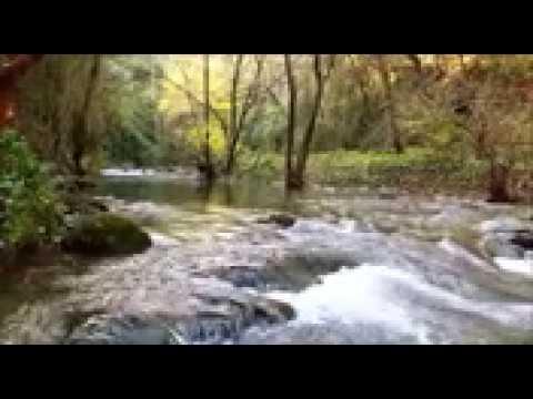 SALMO 27 Fiducia in Dio senza alcuna paura (Consigli di Dio, Canto e lettura del Salmo)