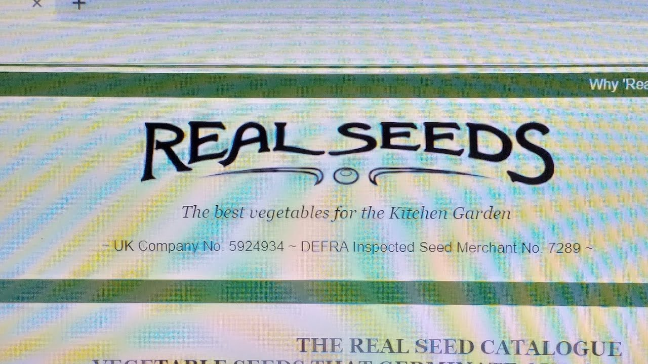 Real Seeds website  The real seeds catalogue  BRILLIANT!!
