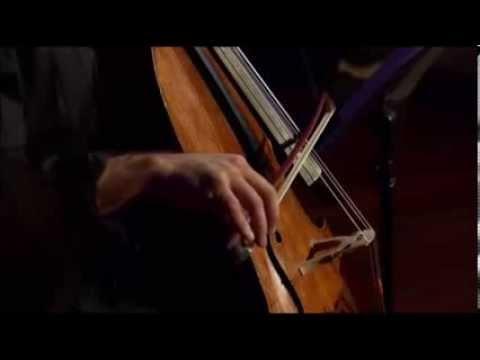 Bach: Cello Suite No. 5 in C minor, BWV 1011 - 2. Allemande - Nicolas Altstaedt