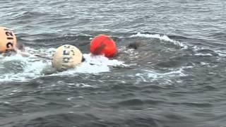 Охота на моржей и китов(Чукотка. Лето 2013г. Охота местных народностей на моржей и китов., 2013-11-17T06:52:01.000Z)