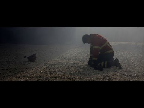 forest fire oct 2017 Spain Portugal California (Waldbrand, incendios forestales) Firefighters