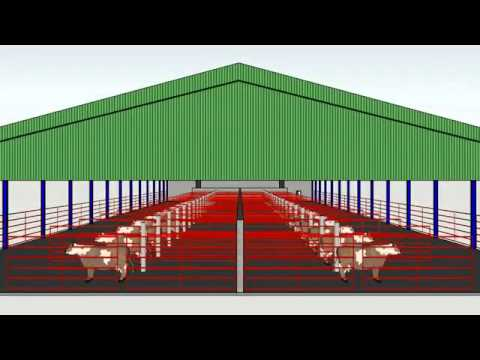 Shed Layout Created With Google Sketchup Youtube