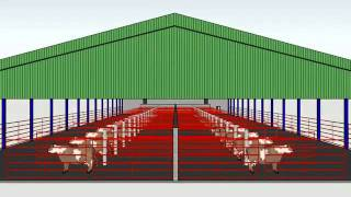 Shed Layout created with Google Sketchup
