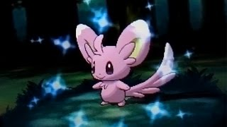 [DEXNAV] Shiny Minccino after 640 Encounters in Mirage Forest! (Pokemon Alpha Sapphire)