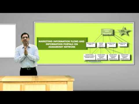 3 Market Information Services