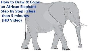 How to Draw & Color an African Elephant Step by Step in less than 5 minutes (HD Video)