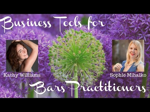 Business Tips And Tricks For Access Bars Practitioners With Kathy And Sophie