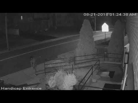 One of two videos of a suspected vandal at the Coxe and Graziano Funeral Home in Greenwich.