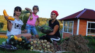 Урожай лука и чеснока