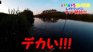 マジパネエ!!!レイドジャパン。ダッヂ開封!!! thumbnail