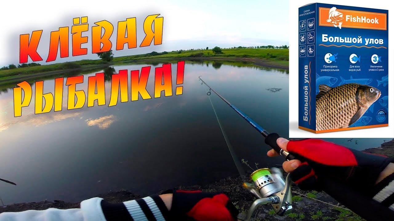 Большой улов FishHook во Владимире