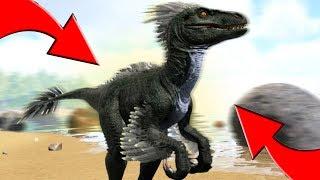 ЭВОЛЮЦИЯ РАПТОРА, ДИНО МОД   Ark Survival Play As Dino