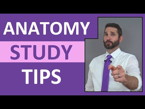 Anatomy Study Tips: How to Pass Anatomy and Physiology