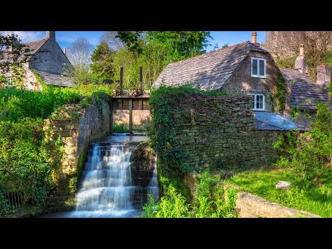 """Peaceful Music, Relaxing Music, Instrumental Music """"Cottage Rose"""" By Tim Janis"""
