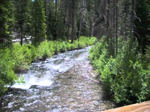 """Pacific Crest Trail """"Nice and Steady""""  2011"""