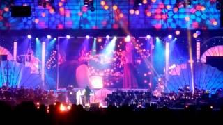 Шоу в Лужниках Волшебное созвездие Disney видео 7