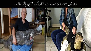 6 Most Unusual Pets In The World Urdu| دنیا میں موجود خطرناک ترین پالتو جانور | Haider Tv
