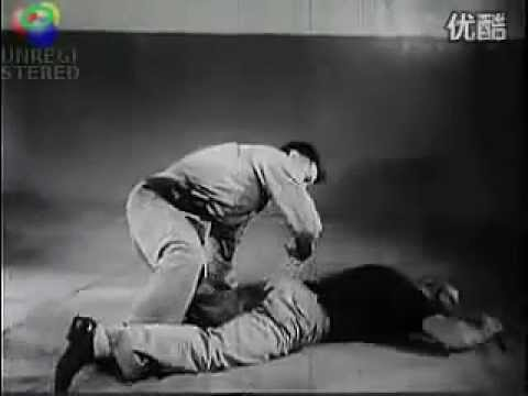 Post WWII German army combatives