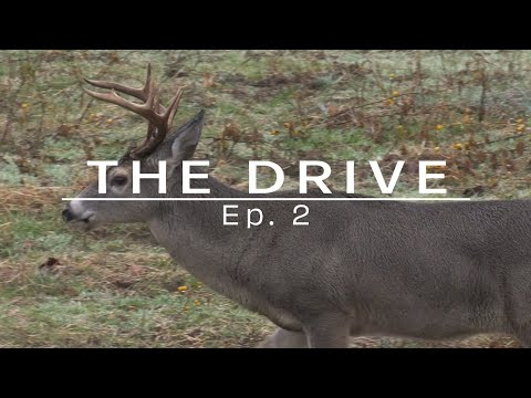 """The Drive"" Ep. 2 - Hunting Alabama Rut"