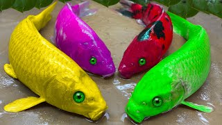 Stop Motion Relaxing ASMR - Best Colorful Koi Fish Catch Eel, Crawfish, Frogs Experiment Underground