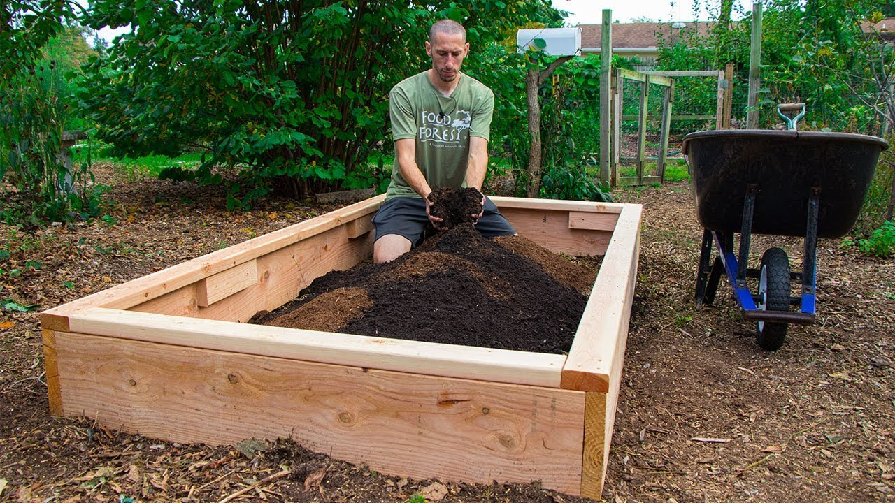 How To Build A Raised Bed Cheap And Easy Backyard Gardening Youtube