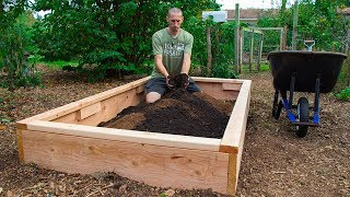 How to Build a Raised Bed CHEAP and EASY, Backyard Gardening