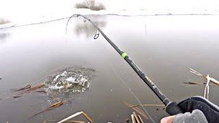 ДА в этой РЕЧКЕ МНОГО РЫБЫ Рыбалка на спиннинг