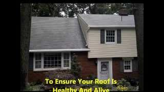 No-pressure Roof Cleaning Hershey PA 17033 Moss Algae Removal