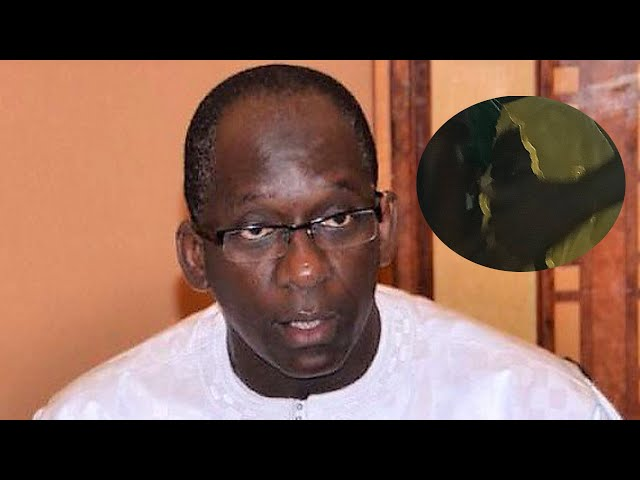 Ndepp 2021  Diouf Sarr beni par Binta Ndir l'esprit vivante de  Mame  Ndiare