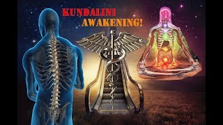 The Relation Between The Spinal Cord With Human Energy and Kundalini Awakening