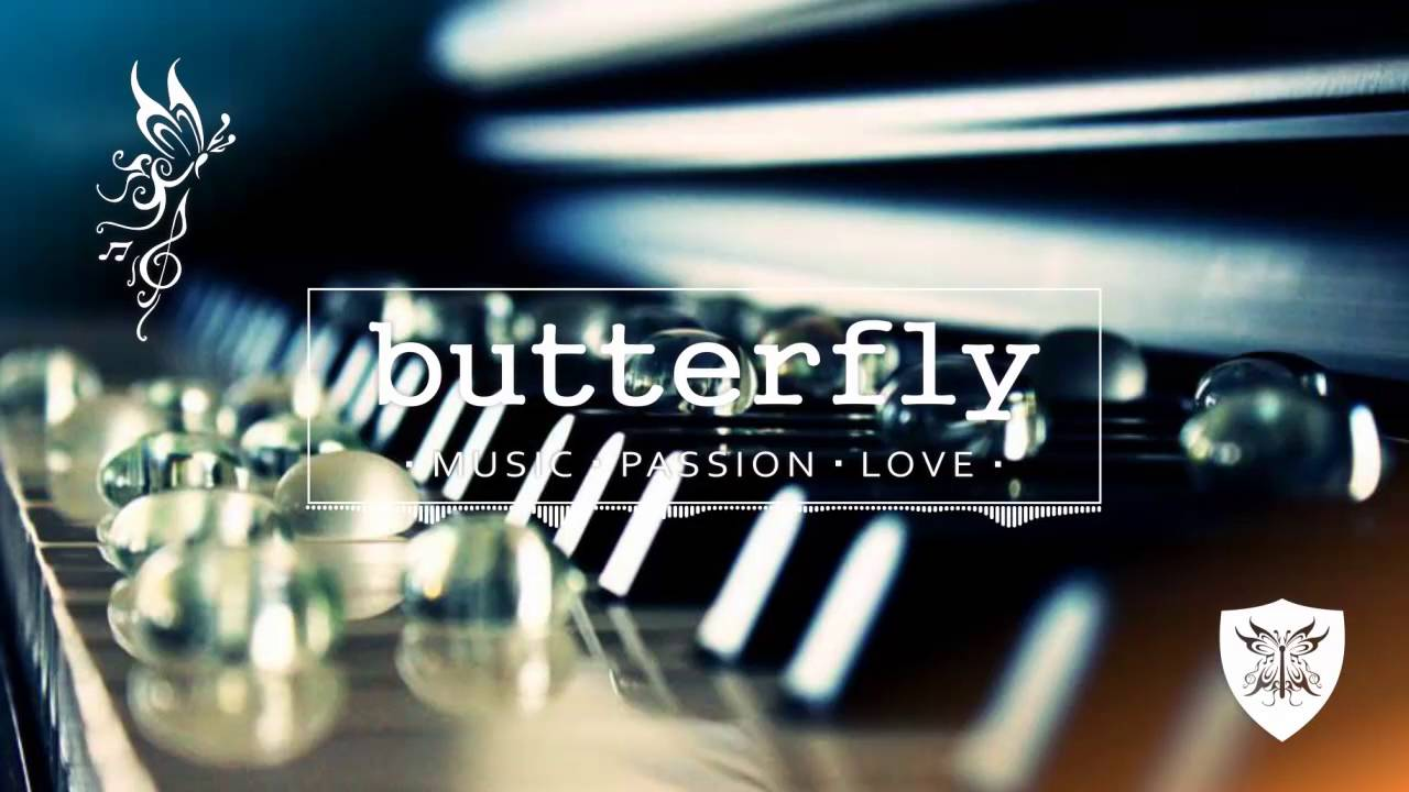 animal-liberation-orchestra-pobrecito-butterfly-music-channel