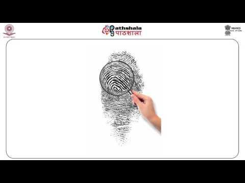 Fingerprint Patterns & Ridge Characteristics (FSC)