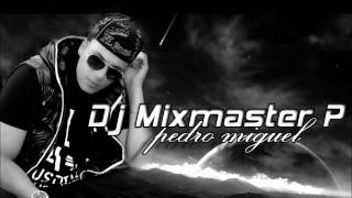 Dj Mixmaster P The King of Partybreaks Vol 1