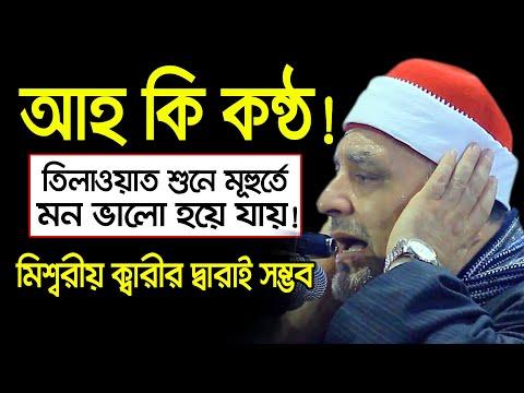 আহঃ কি কণ্ঠ! শুনেই কলিজা ঠান্ডা! Quran Reacting By Mishary Qari। A Beautiful Voice Quran Tilawat